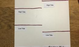 The image is of the tactile graphic describing neap tide and spring tide.
