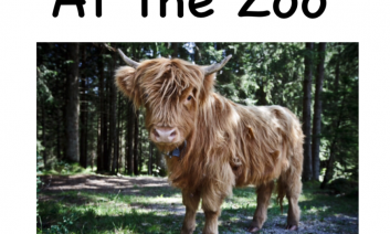 """Photo of a furry Yak with two horns and the text, """"At the Zoo"""""""