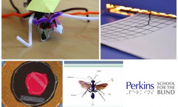 A collage for STEM tutorial.