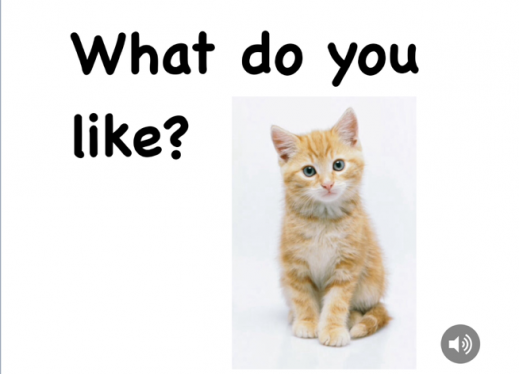 "Title page of the a digital book with a tan and white kitten and the title, ""What do you like?"""