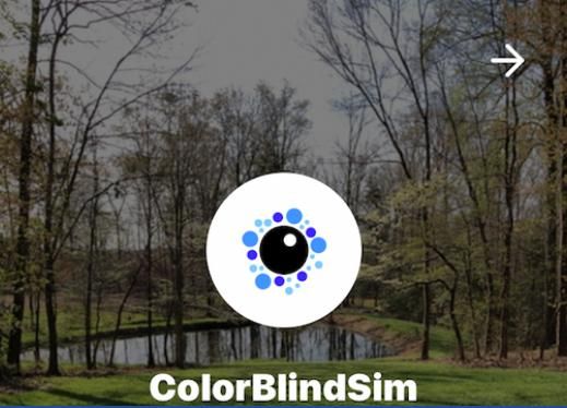 "Screenshot of ColorBlindSim website with logo and text, ""ColorBlindSim"""