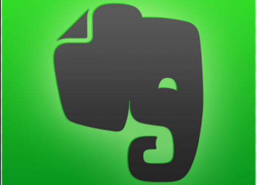 Logo: Black Elephant head on green background.