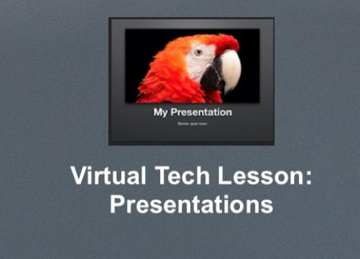 "Screenshot of a keynote slide template with parrot and ""my presentation""; additional text, ""Virtual Tech Lesson"" Presentations"""