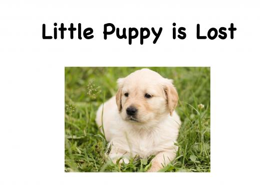 "Cover page of the book ""Little Puppy is Lost"" is with a golden retriever puppy laying in the grass."