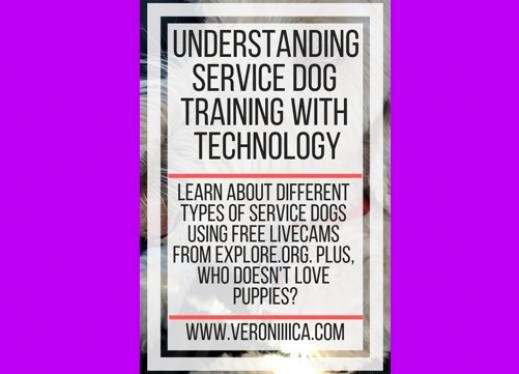 Understanding Service Dog Training with Technology. www.veroniiiiica.com