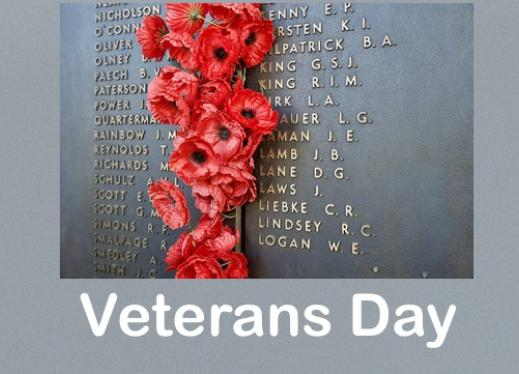 """Photo of wall with fallen soldiers' names and red poppy flowers pressed into the seams. Text, """"Veteran's Day"""""""