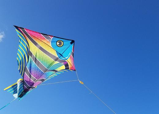 kite decorated like a fish