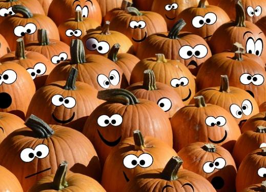 A large patch of pumpkins each with different painted on expression.