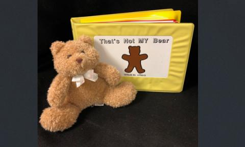 "Picture of the book ""That's Not My Bear"" book standing up with a brown teddy bear leaning on it."