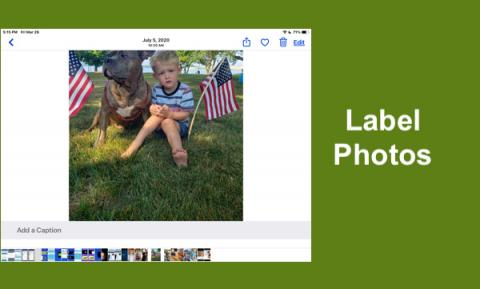 "Photo of preschooler sitting in the grass with his dog between 2 small American Flags and text, ""Label Photos"""