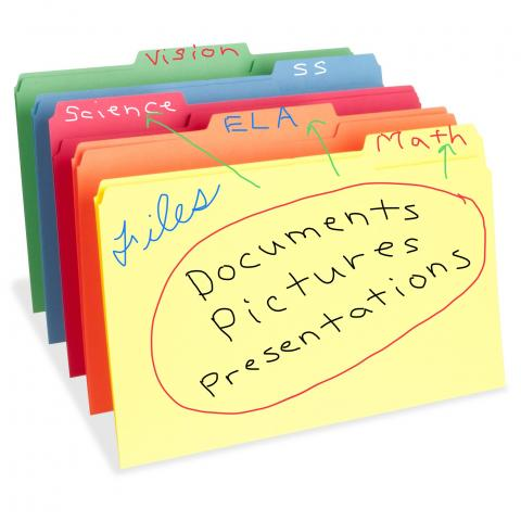 Graphic organizer of file folders and the files that go into them.