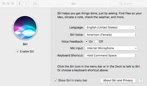 Screenshot of the Mac's Siri Set up page with set up options.