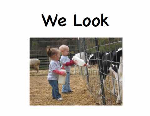 Cover of the digital book titled We Look. A young girl and a boy are holding large bottles of milk to feed a calf.