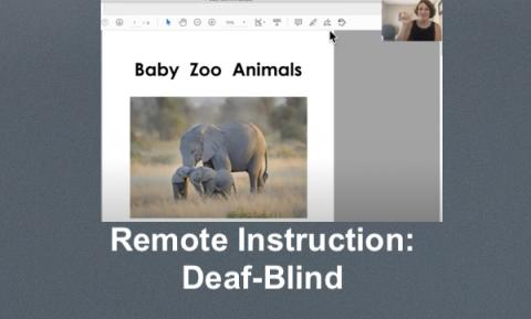 Screenshot of Baby Zoo Animals video book displaying elephant page with teacher signing in small window.