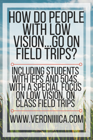 How do people with low vision go on field trips? www.veroniiiica.com