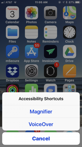 "Screenshot of iPhone's home screen with Accessibility shortcuts menu, ""Magnifier, VoiceOver, and Cancel""."