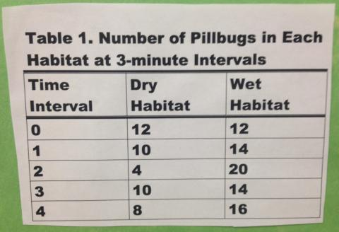 Chart of number of pillbugs