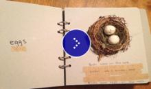 An example of adapted science book with bird eggs and nest.