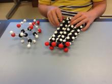 Molymod models of a carbohydrate and a fat molecule