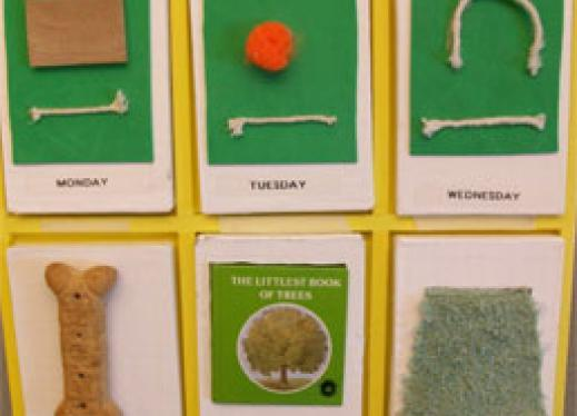 Tactile days of the week