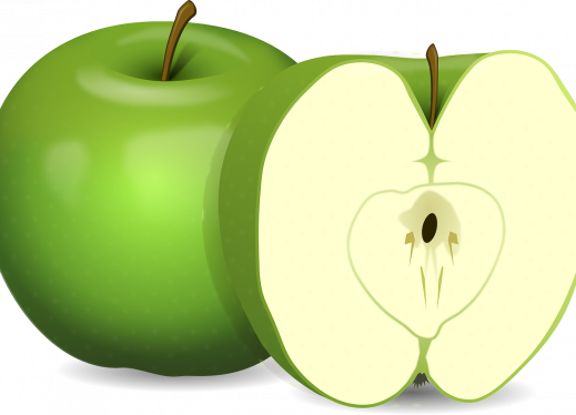 drawing of a green apple and a cross section of the same apple