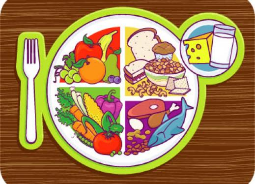 Intro To My Food Plate Perkins Elearning