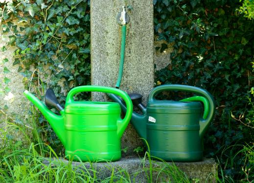 two green watering cans in a garden