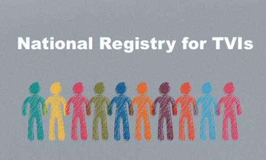 """Colorful cartoon people silhouttes holding hands and text,""""National Registry for TVIs"""""""
