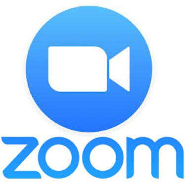 Zoom An Accessible Video Web Conference Service Perkins