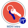 MDVI Intro badge