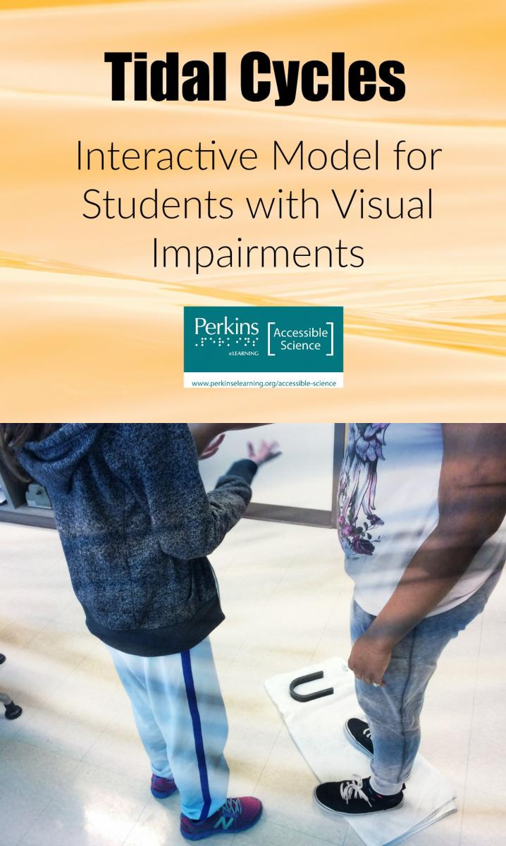 Tidal cycles collage