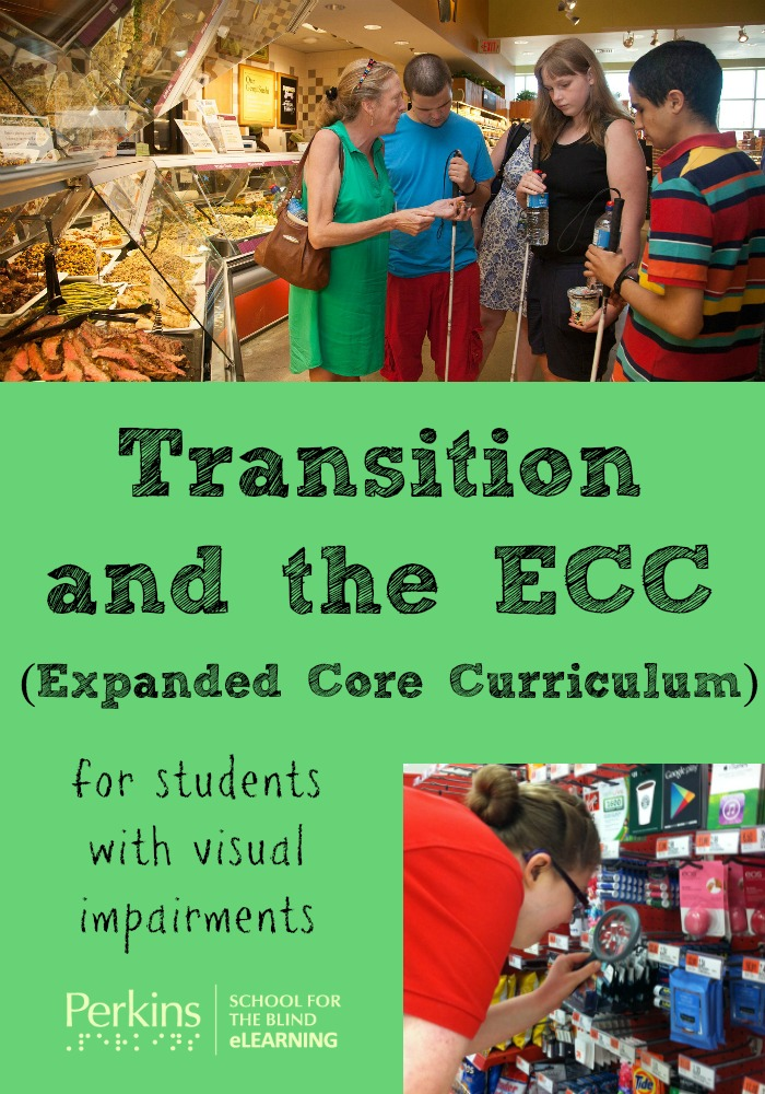 Pinterest collage for transition and the ECC