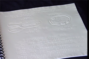 A science textbook in a braille textbook, which includes tactile graphics of the cell and its structures, and braille labels for each.