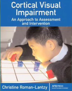 Cortical Visual Impairment: An Approach to Assessment and Intervention by Christine Roman.