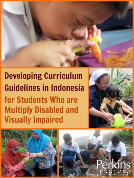 Developing Curriculum Guidelines in Indonesia for Students Who are Multiply Disabled.