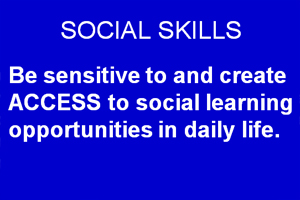 Providing Access to Social Learning Opportunities.