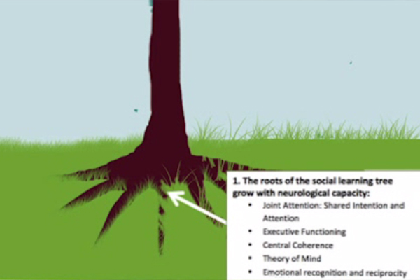 A graphic depiction of the social learning tree.
