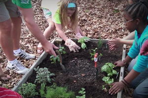 A group of young students planting an herb garden in a raised bed.