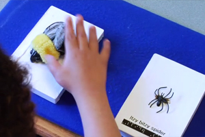 A young girl who is blind is offered a choice of songs represented by two symbol cards. One has a small fuzzy bumble bee attached, the other, a plastic spider.