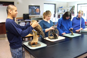 Teacher and three students at lab table examining three taxidermied birds.