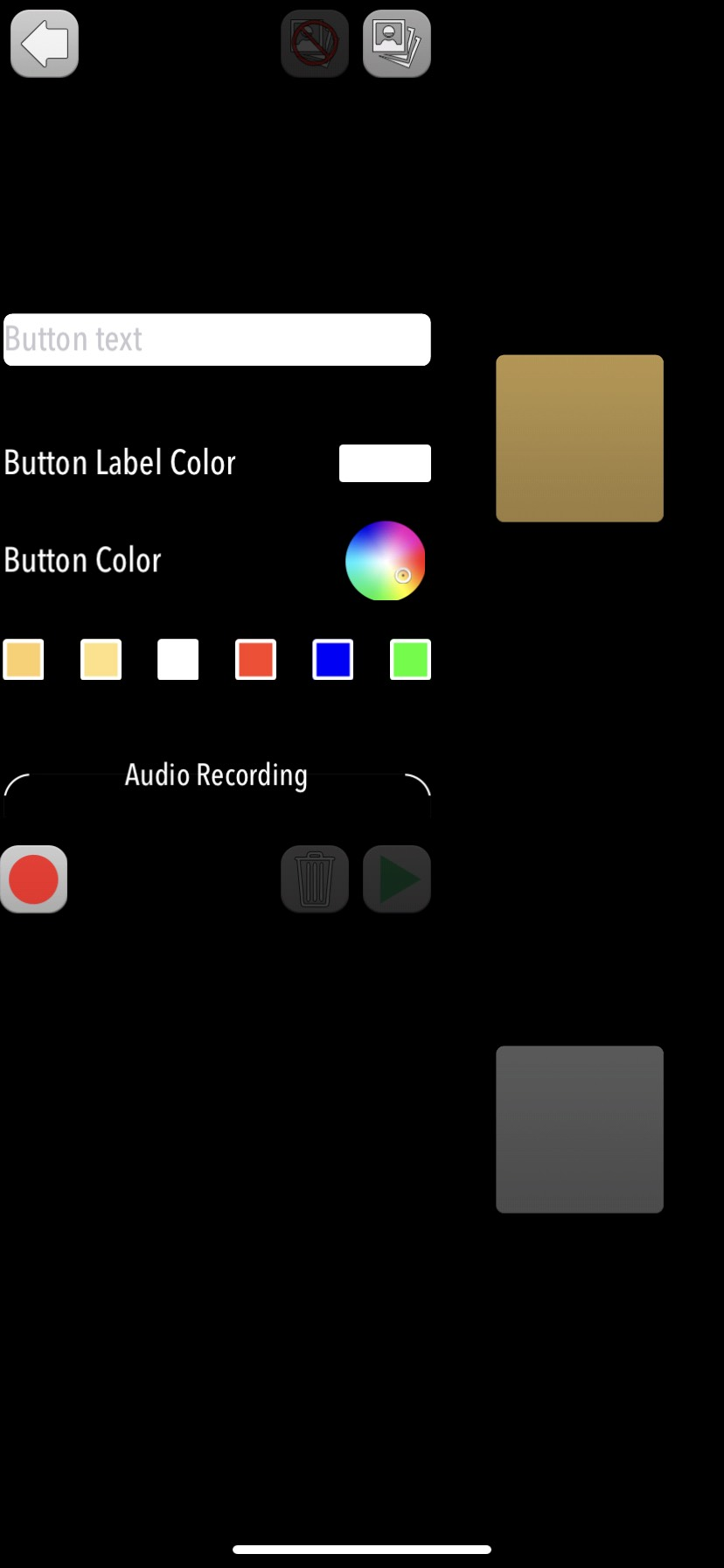 Screenshot of customization board for icon options: button text, color options, audio recording