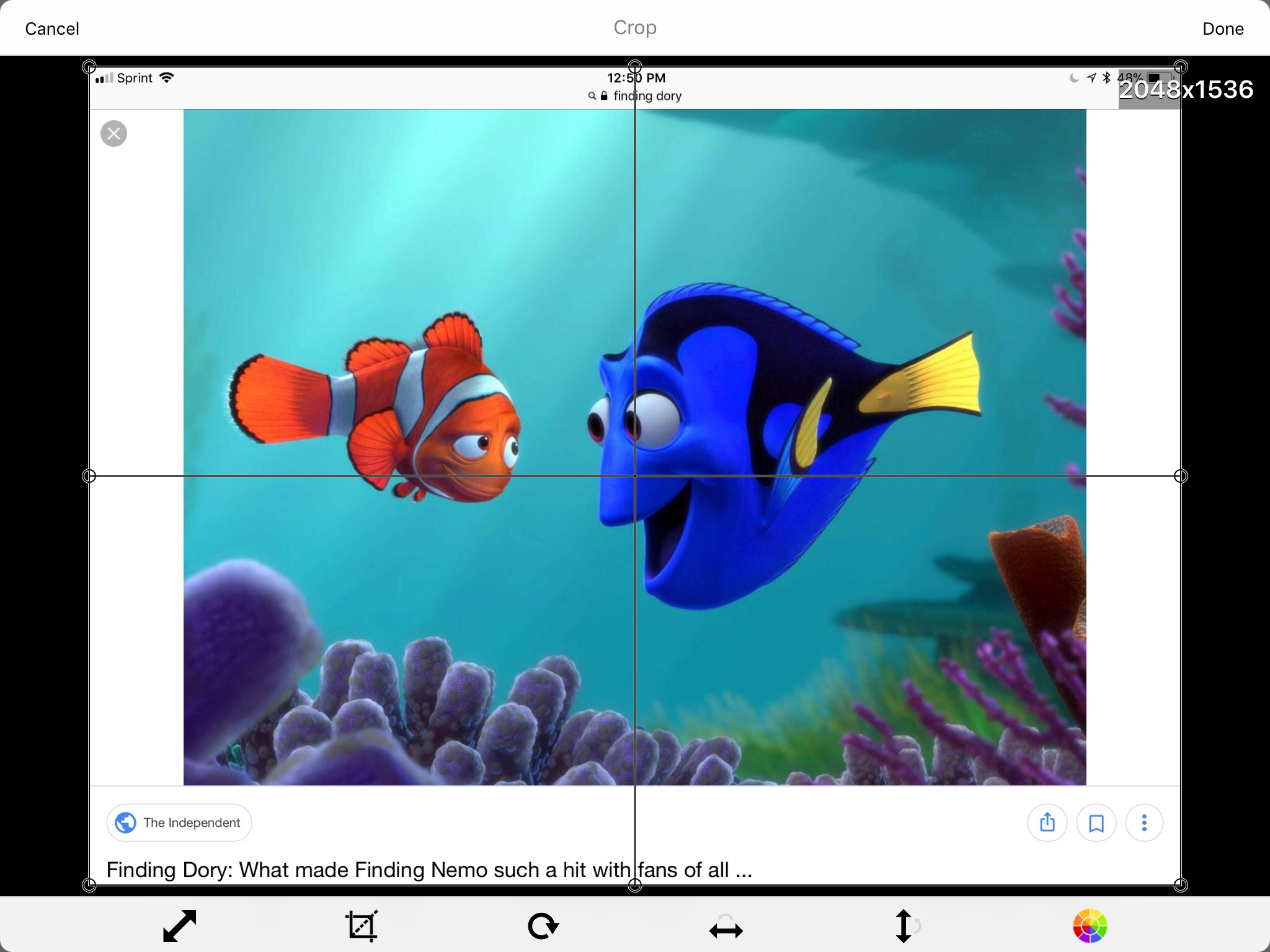 Screenshot of Finding Dory picture in You Doodle app.