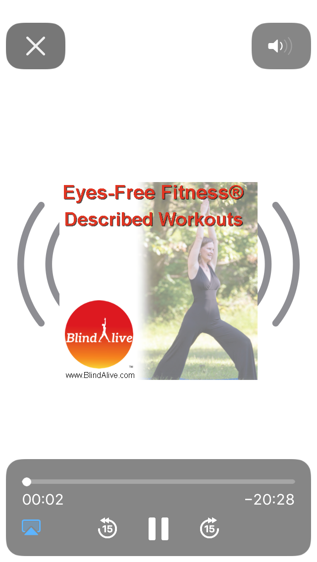 Screenshot of Eyes-Free Fitness: Workout screen.