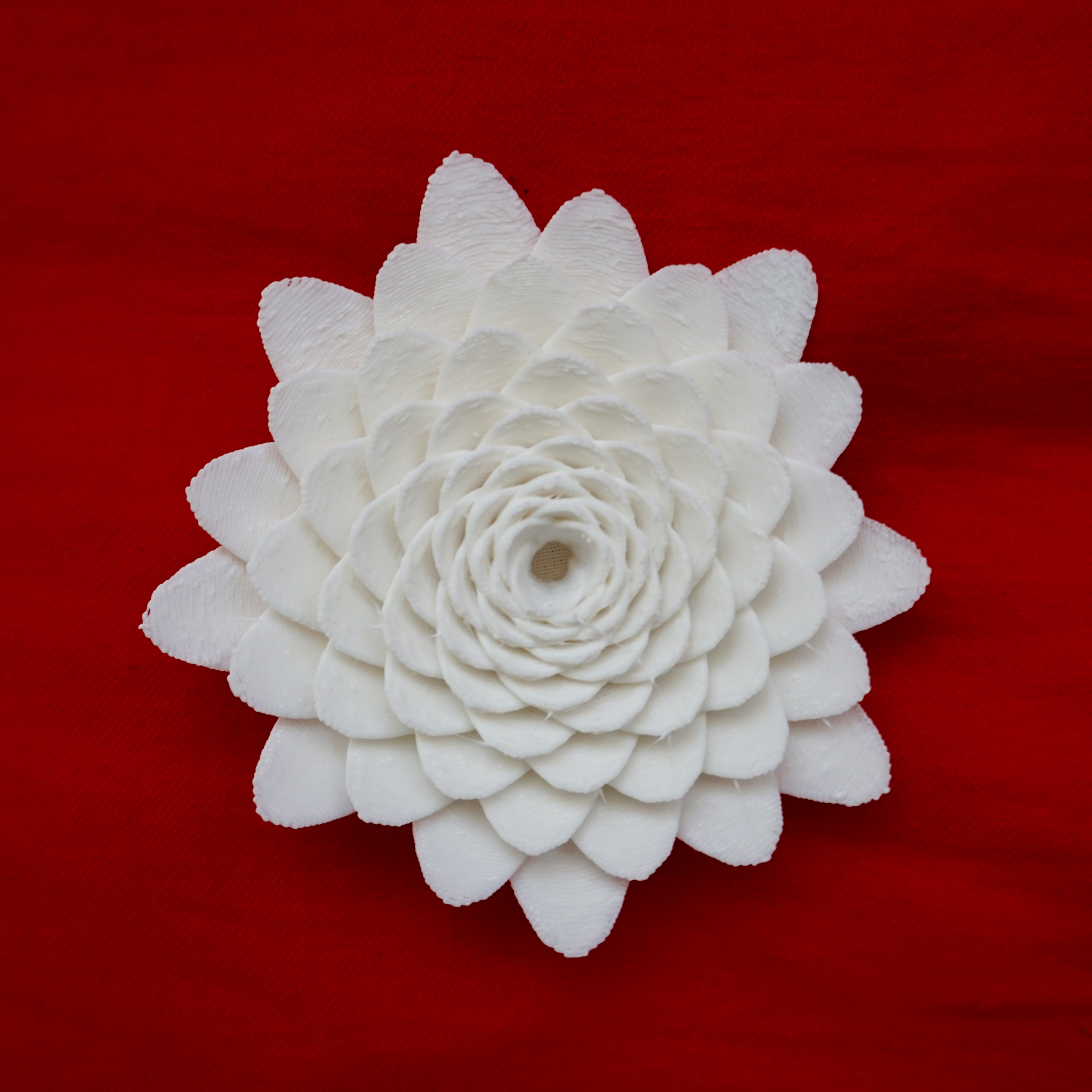 White 3d printed flower displaying individual petals spirally out from the center with approximately 13 levels.