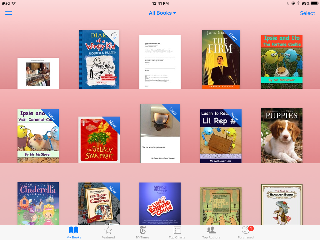 Screenshot of iBooks page with showing the book covers of books on this iPad